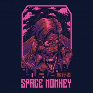 میمون فضایی دوباره از بین رفت | Space monkey remastered