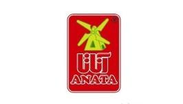 Anata